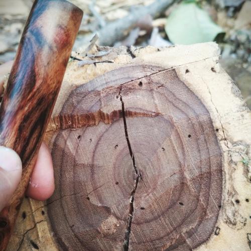 Lem kayu dan lem hpl Crona - Untitled design 25 e1605797589367